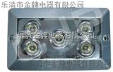 J-NFC9177免维护节能无极灯