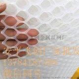 塑料网 养殖网 安平塑料网厂家 小孔养殖网