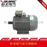 WOLONG/ 卧龙电气YE2系列高效率三相异步电动机 工业泵