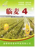 临麦4号|临麦4号小麦种|临麦4号高产小麦种|临麦4号小麦良种|临麦4号高产小麦良种|博信供