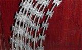监狱防护网、带刺防盗铁丝网、蛇腹刺网