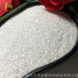 亮彩 高闪银金葱粉 PET环保优质高亮银闪光粉 高亮度撒金粉 水晶亮片 厂家直销