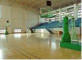 篮球场 (LQC012)