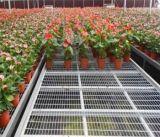 温室种植苗床网¥温室种植苗床网片现货¥温室种植苗床网片生产厂家
