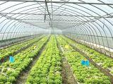 同涩网吉吉影�_吉林梨树果园灌溉优质小管大棚厂家直销