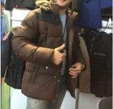凯达-冬款男装塞棉衣