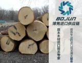 广州西南桦进口报关|代理|清关|流程|手续|费用博隽