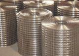 高品质不锈钢碰焊网,不锈钢丝碰焊网,不锈钢碰焊网片,不锈钢丝碰焊网片