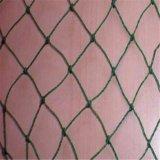 养鸡尼龙网 塑料养鸡尼龙网 聚乙烯网 盖鸡网JT-2.3