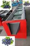 不伤果粉蓝莓震动筛选机械(筛网直径分级)