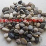 鹅卵石 天然河卵石河卵石 景观石