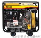 雷恩3kw小型柴油发电机 移动式电启动省油柴油发电机厂家直销