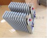 防爆电热暖气BYT51、BDR51防爆电热暖气,防爆电热油汀