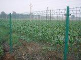 草莓园围栏网@度假村草莓园围栏@草莓园围栏图片