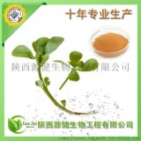 天然植物源殺菌劑,專業供應馬齒莧皁甙,馬齒莧提取物