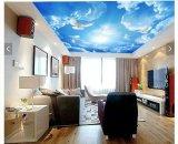 家装室内使用软膜天花吊顶 艺术天花板