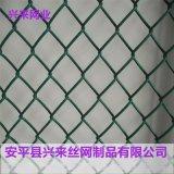 镀锌勾花网,煤矿勾花网,护栏勾花网