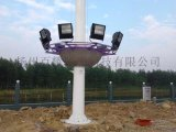 15米20米25米带升降LED超亮高杆灯厂家直销