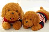 毛絨玩具小狗泰迪狗公仔毛絨玩具趴趴狗布娃娃