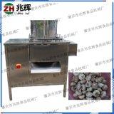 厂家现货直销蒜头分粒 分离设备 干式大蒜蒜种分瓣机器