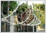 防护刀片刺绳网(22-65)
