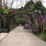 景区入口大门造型仿山石树木树叶景观设计装饰