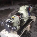 供应上海文都牌优质LQ3A-3型不锈钢转子泵