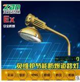 厂家直销SBR1120免维护节能防爆道路灯