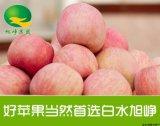 白水红富士苹果