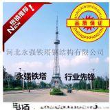 專業鐵塔廠家生產20米-180米電視塔精工細作