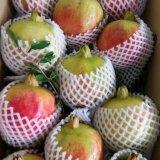 会理有机甜石榴农场现摘 新鲜水果