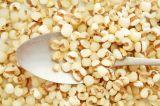 藥鄉購貴州小薏米 新貨薏苡仁薏仁米農家自產有機薏米