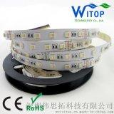 伟思拓RGBWW/五合一 五色灯带RGB+调色温CCT 暖白加正白灯带七彩