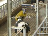 奶牛清扫器,奶牛按摩器,奶牛清扫刷,安徽凯力达刷业专业生产