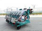 6行DEKE乘坐式高速水稻插秧机