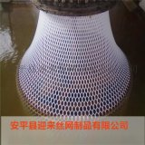 塑料养殖网 pe塑料平网养殖网 塑料平网养殖网