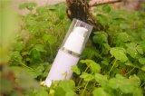 天斯秀尔 化妆品厂家 太阳猫防晒霜 oem加工 清爽保湿 隔离 遮瑕美白