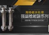 传热配件 强磁永磁除垢器 磁水处理设备 杀菌除垢 DN25-1000