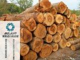 广州原木进口报关|代理|清关|流程|手续|费用博隽