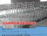 供应猪舍专用母猪限位栏价格 猪用定位栏厂家批发 鹏翔首选
