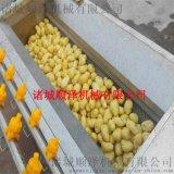 专业供应大姜清洗机 大姜清洗切片生产线 毛辊清洗机 大姜加工设备 姜粉设备