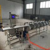 海蛎子GCFX-300皮带式重量分选机