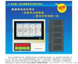 触摸式10.2寸控制无纸记录仪