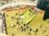 超级豪华人气的百万海洋球展览出租啦南京