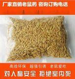 灭鼠公司好的灭鼠方法,批发灭鼠剂, 稻谷灭鼠产品厂家