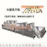 东丰机械直销果冻风干机、风干机、棒棒冰风干机、大型风干机