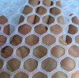 合肥塑料养殖网 优质合肥塑料养殖网价格 精益求精 信誉供货商