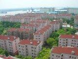 长沙、常德、郴州、衡阳树脂瓦-全国最好的树脂瓦厂家