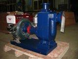 单缸水泵机组 单缸柴油机水泵