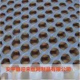 塑料網,安平塑料網,養殖塑料網